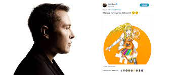 However, it is important that you understand how bitcoin works, and other details before you buy bitcoin. Elon Musk Tweets About Bitcoin Gets Account Locked Cryptoglobe