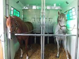 Horse Shipping Quotes Inspiration Stall Space Examples National Horse Carriers Association