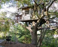 40 Tree Houses So Awesome Youu0027d Trade Your Home For One  Tree Treehouse Vacation California