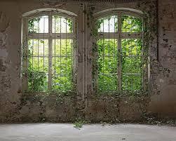 Iangebote Fototapete Alte Fenster 350x255 M Glattvlies