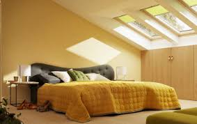 Skylight Window Blinds  Home ACTWindow Blinds Cheapest