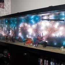 space aquarium