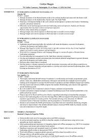 Public Relation Director Resume Faculty Staff With Public Relations And Fundraising Managers And Img