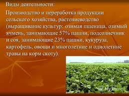 Растениеводство виды продукции растениеводство виды продукции