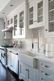 Kitchen Appliances : White Glass Kitchen Cabinet Doors Featured ...