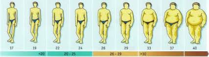 Bmi Chart Men Bmi Chart For Men Calculate Your Body Mass Index With Our