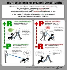 Example Of Classical Conditioning Classical Conditioning Examples If You Have Any Questions Dont