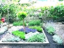 herb garden layout ideas outdoor herb garden outdoor herb garden layout ideas design about stand cont large outdoor herb garden outdoor herb garden home