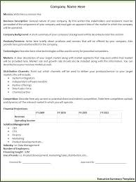 Executive Summary Template Business Example Word Templates