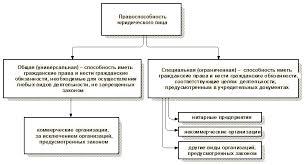 Правоспособность юридического лица и представительства и фидиалы