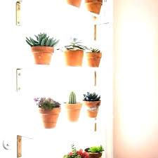 under window shelf plant window shelf window ledge shelves kitchen window plant under window plant shelf under window shelf