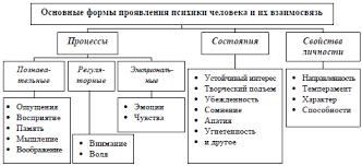 Основные функции психики человека и формы ее проявления ru Формы проявления психики человека