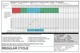 Natural Family Planning Mucus Chart Lifeissues Net Efficacy Of Cervical Mucus Observations