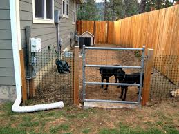 backyard dog fence ideas painted fences wood