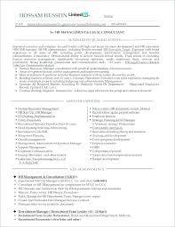 Sample Hr Professional Consultant Resume Hr Manager Resume