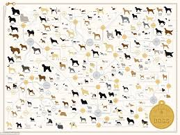 All Dog Breeds Chart Lisas World The Family Tree Of Dogs From Tiny Chihuahuas