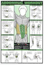 Beginners Guide To Exercise Workout Posters Workout