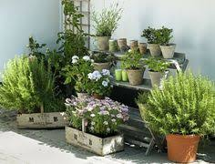 apartment herb garden balcony. Beautiful Apartment Start Apartment Gardening If You Live In A City And Donu0026 Have Space For  Regular Garden With These 7 Herb Tips Throughout Apartment Herb Garden Balcony P