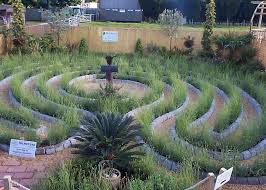Small Picture The Lavender Labyrinth Garden Haywood Landscapes Ltd