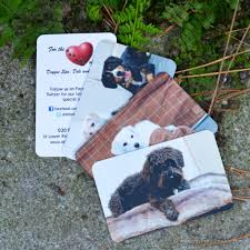 Pet Sitter Business Cards Pet Business Cards Creative Ideas And Best Practice Pet Sitting