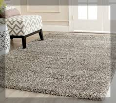 willpower 9x12 area rugs target at