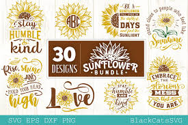 And just like my other paper flower templates, this one comes with a printable pdf template and svg, png, dxf cutting files. Sunflower Bundle 30 Designs Graphic By Blackcatsmedia Creative Fabrica In 2020 Graphic Design Svg Monogram Svg