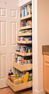 Pantry For Kitchens 47 Cool Kitchen Pantry Design Ideas Shelterness