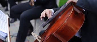 Whether you're a fan of the classics like pachelbel and hans zimmer or prefer to surprise guests with a string rendition of chasing cars, we have 100 wedding processional songs for you to choose from. 80 Best Instrumental Wedding Songs Wedding Forward