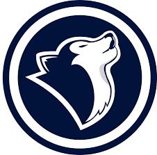 uconn huskies concept logo final by pistol n poet