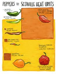 Pepper Level Chart I Think Youre Sauceome 2012 October 5