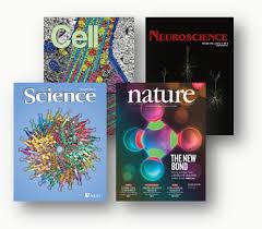 Stereo Investigator Citations   MBF Bioscience