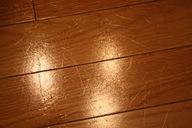 photos of bamboo floors dogs scratches