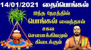 Thai Pongal 2021 - Pongal Date Time ...