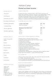 Resume Format For Dentist Resume Format For Dentist Pdf Sources