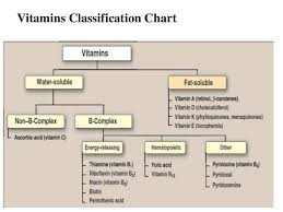 Human Nutritional Needs Chart Vitamins Classification Chart Niacin Vitamin Vitamin B