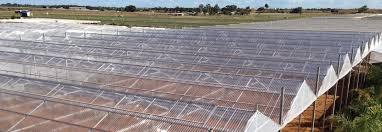 Asbestos Sheet Roof Design Suntuf Corrugated Polycarbonate Sheet Roofing Palram