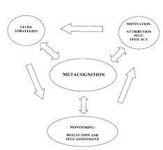 metaco jpg