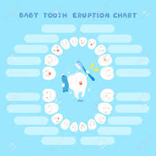 Cute Cartoon Healthy Baby Tooth Eruption Chart