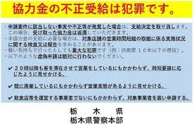 新型 コロナ ウイルス 栃木 県