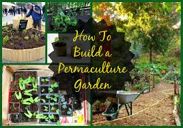 Permaculture Garden Design Ideas Keyhole Permaculture Design Principles 12 Steps To A More
