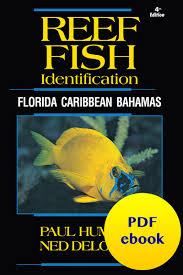 Pdf Ebooks Reef Fish Reef Creature And Reef Coral