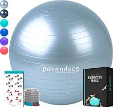 Free Exercise Ball Chart Pavandeep Exercise Ball Chair Bpa Free Silver M 65cm