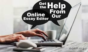 get the help from our online essay editor
