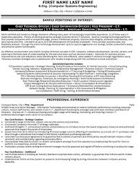 Chief Technical Officer Resume Sample & Template