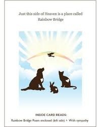 Sympathy Card Pet Loss A Pack Of Our Pet Loss Sympathy Cards Pallet Paws