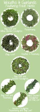 fresh herb wreaths and garlands from fiftyflowers