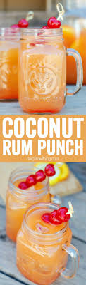 58 Best Drinks Images On Pinterest  Party Drinks Alcoholic Party Cocktails With Rum