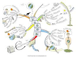 best images about mind maps creativity and 17 best images about mind maps creativity and innovation e books and four agreements