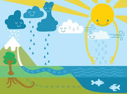 The Water Cycle National Geographic Kids