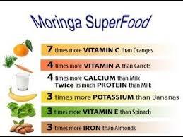 Moringa Comparison Chart Moringa Oleifera The Miracle Moringa Tree Health Benefits